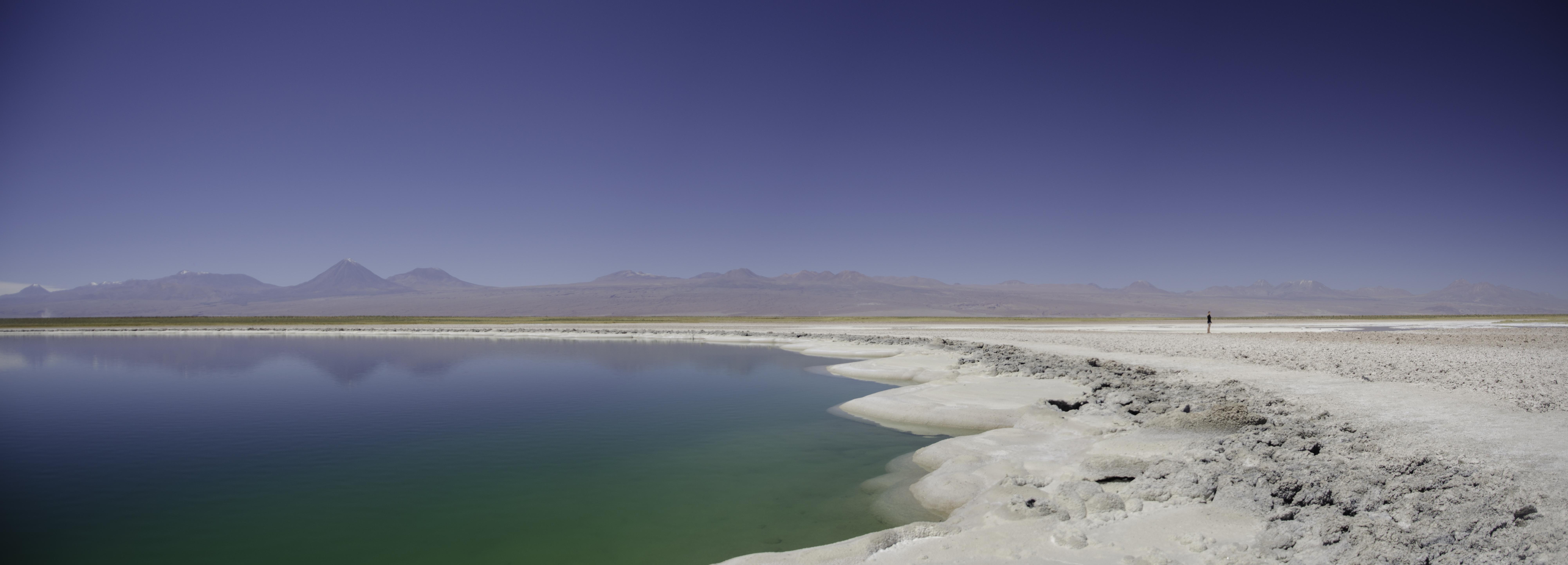 Altiplanic lagoons in Atacama desert